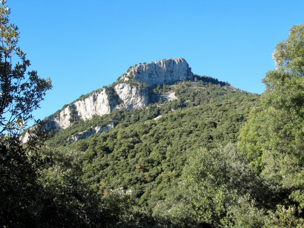 Puig del Bassegoda